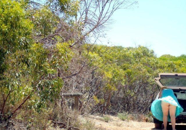 【パンチラエロ画像】風が吹いた!軽そうなミニを見守り捲れ待てば下着が…www 11