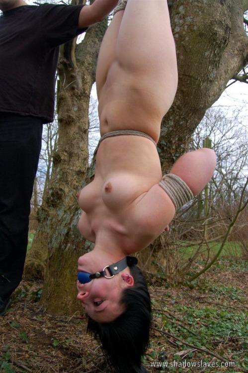 【SMエロ画像】生半可に真似してはいけないwコツが要る女体宙吊り拘束www 13